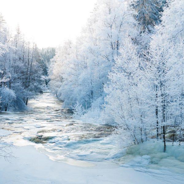 Talvinen jokimaisema, hyydetulva muodostumassa jokeen.