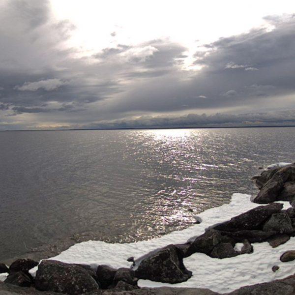 narijärvi Seitalaassan säähavaintoasemalla 8.6.2020 (kuva: Ilmatieteen laitos)