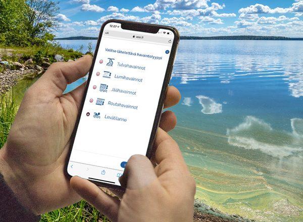 Henkilö jättää puhelimellaan oman havintonsa järven pahasta sinilevätilanteesta